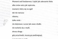 DniPapieskie21_wystawa_04